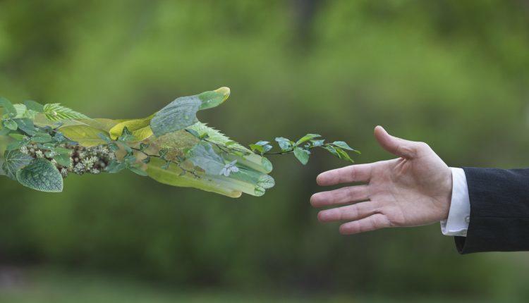 Sustainable change