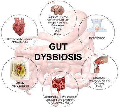 Intestinal Dysbiosis
