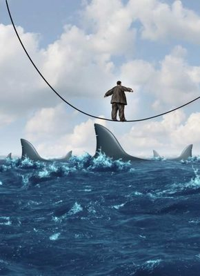 Tightrope-walking-over-shark-infested-waters