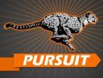 Cheetah in pursuit